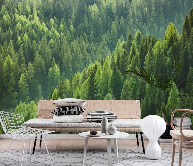 Trees from above Wall mural Photo wallpaper Green Happywall