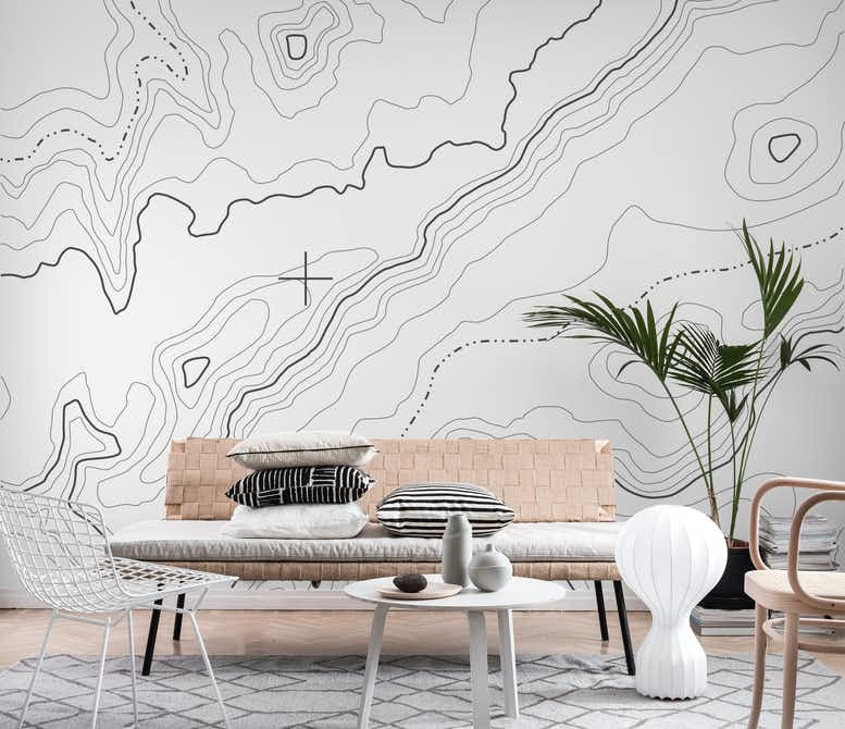 Buy White Topographical Map Wall Mural Free Us Shipping At