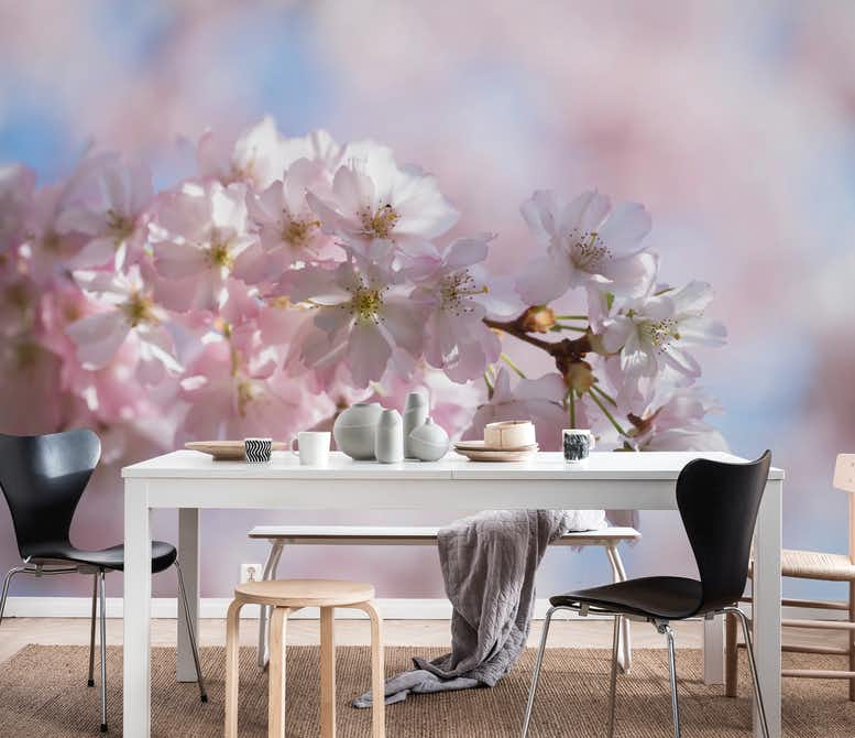 Spring And Cherry Blossoms Wall Mural