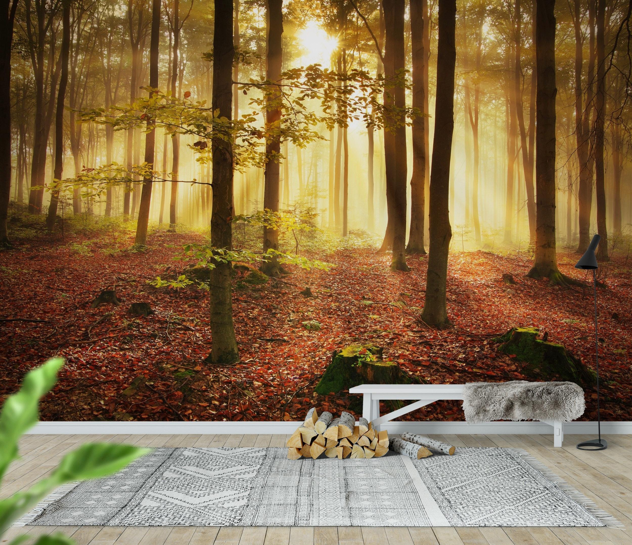 Autumn Forest Part 31
