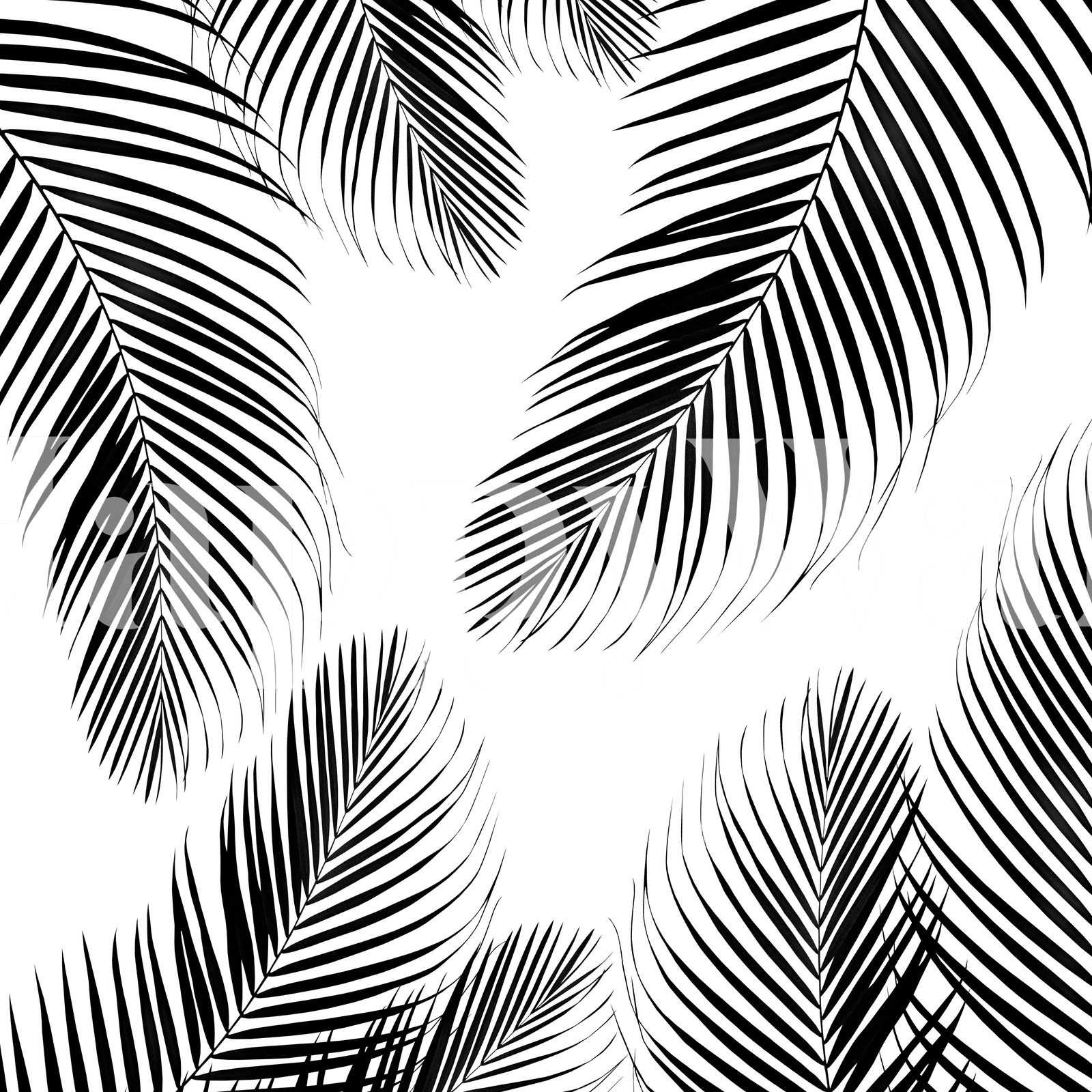 Buy palm leaves black white 2 wall mural free us shipping at happywall com