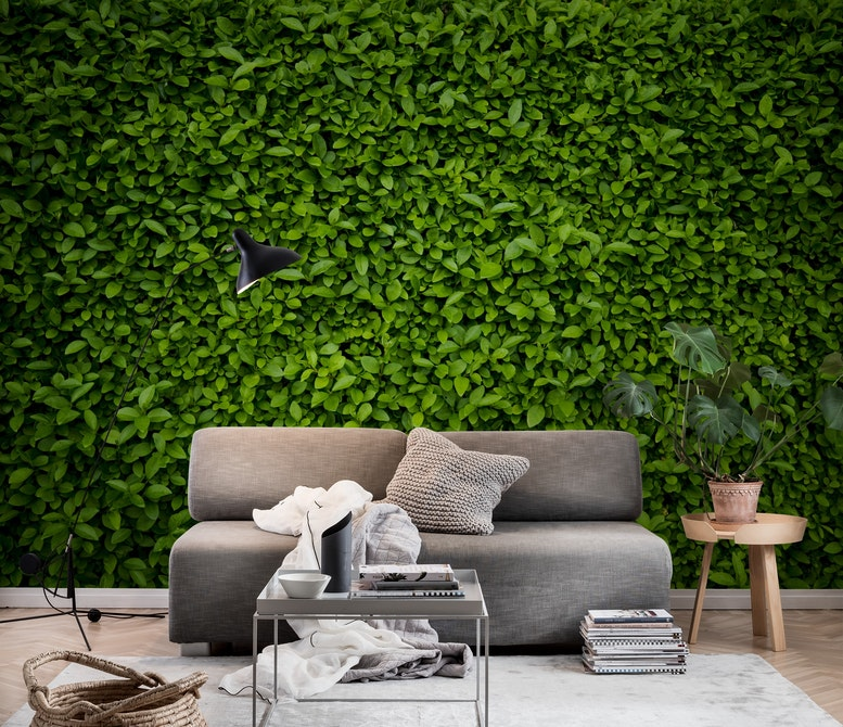 Green leaves wall Wall mural Photo wallpaper Green Happywall