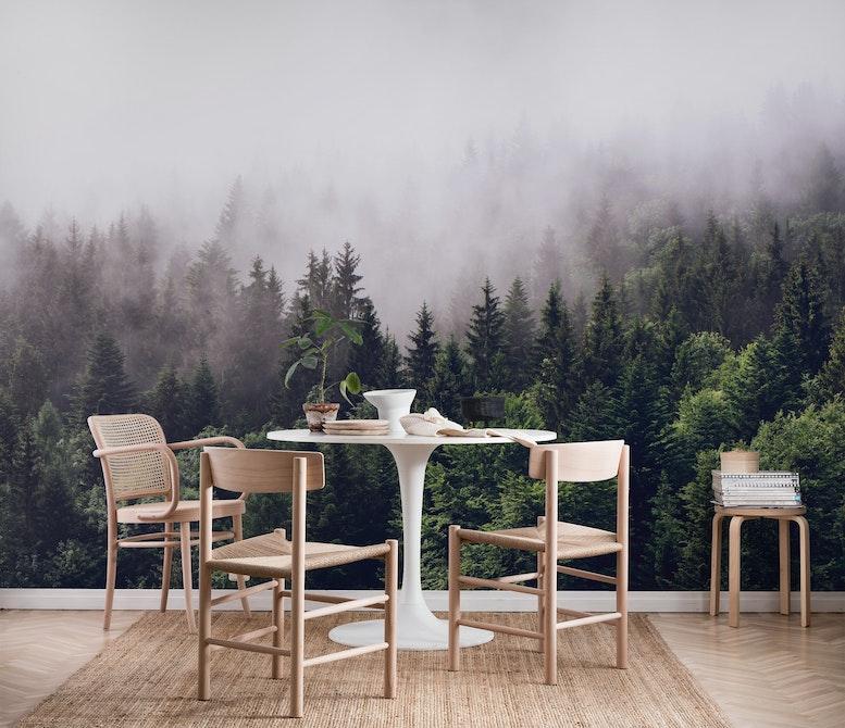 Cloudy forest Wall mural Photo wallpaper Fog Fog Happywall